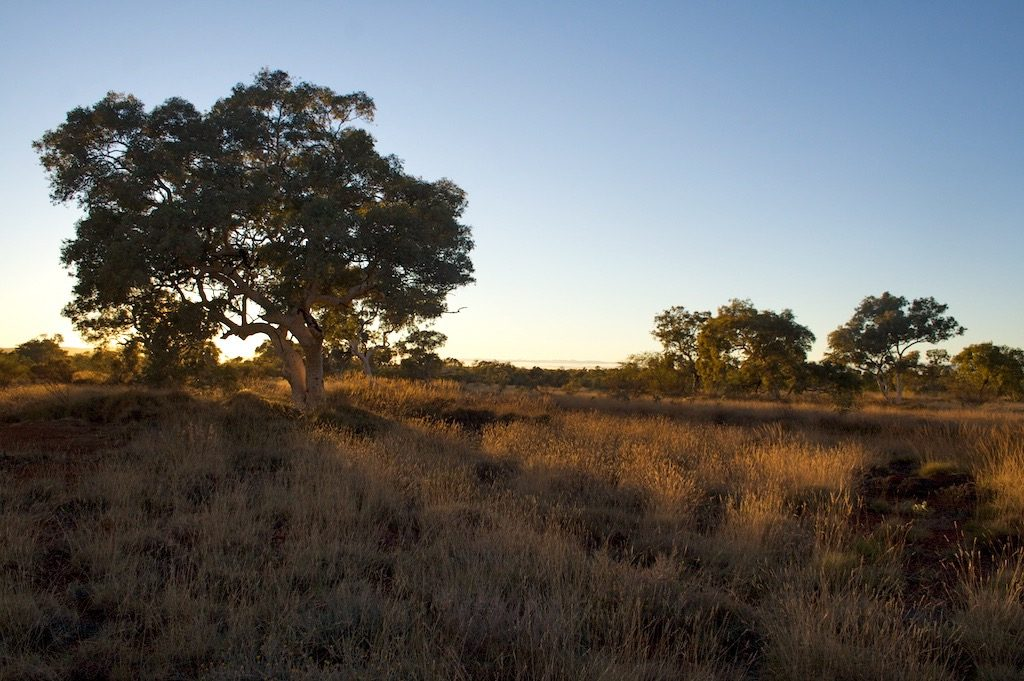 Camping Your Way Around Australia: Karijini National Park