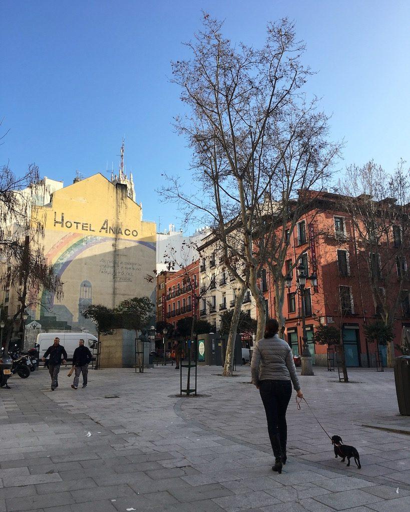Schnitzel in Madrid