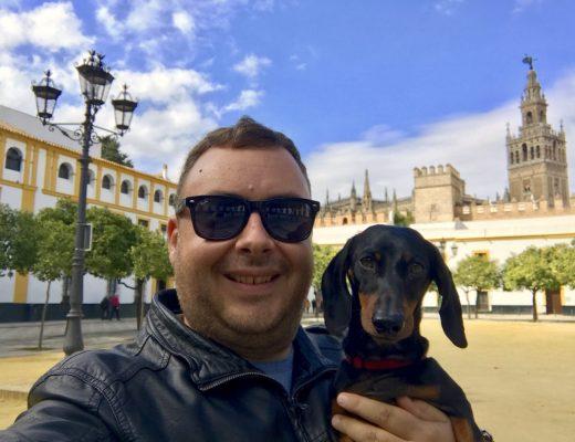 Schnitzel in Seville