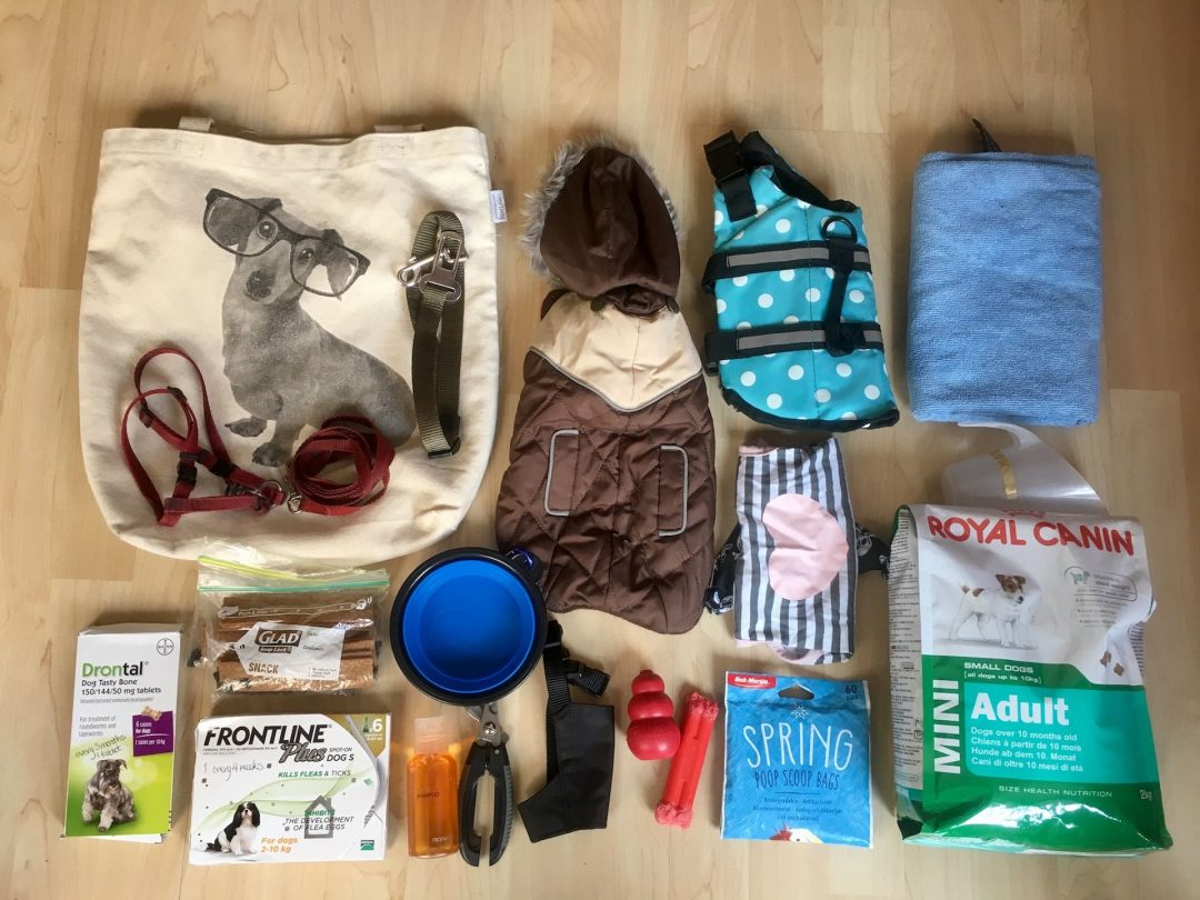 Dog travel packing list