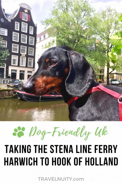 Stena Line Ferry to Hook of Holland with a Dog
