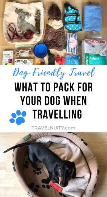 What to Pack for Your Dog