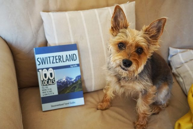 Dog-Friendly Switzerland 3