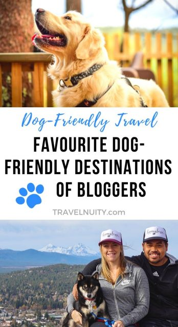 Favourite Dog-Friendly Destinations of Bloggers