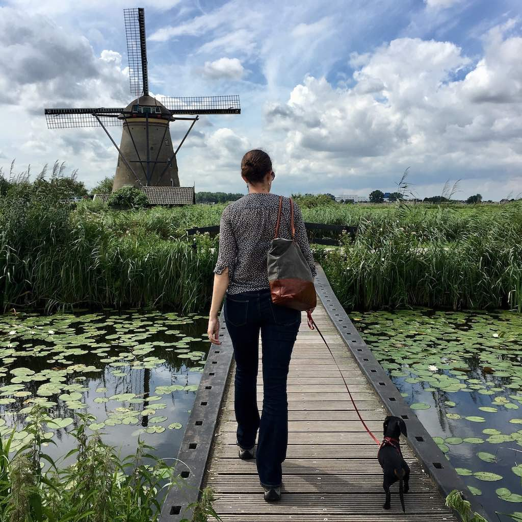 Kinderdijk with dog