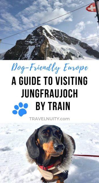 Visiting Jungfraujoch pin
