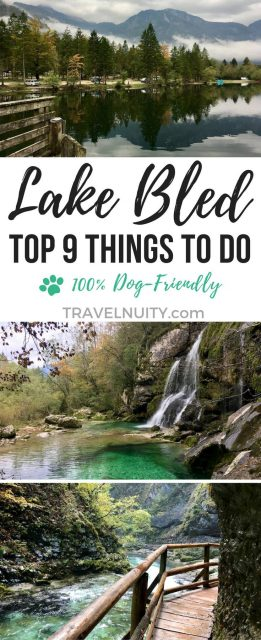 Dog-Friendly Lake Bled