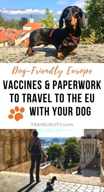 EU Vaccines & Paperwork pin