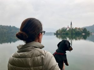 Dog-Friendly Lake Bled