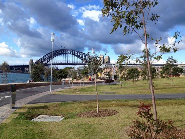 Dog-friendly Barangaroo Reserve Sydney