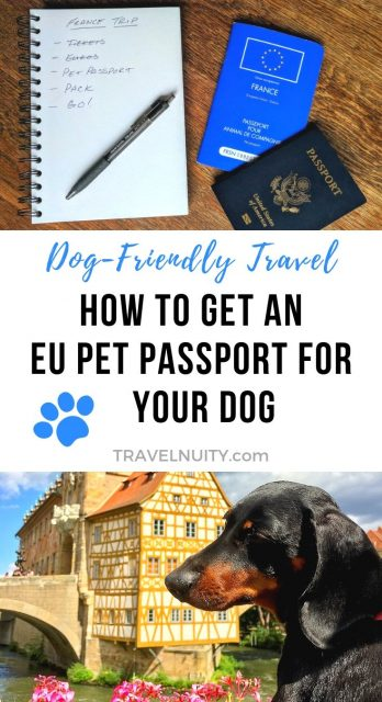 EU Pet Passport pin