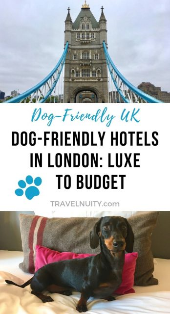 Dog-friendly hotels in London