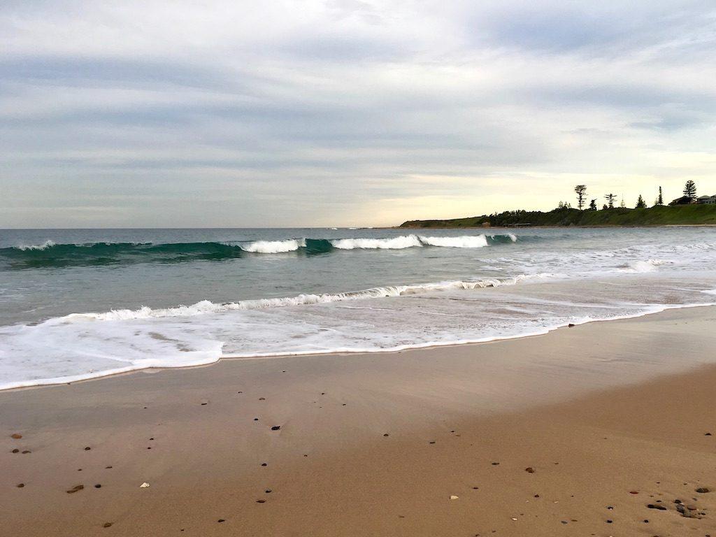 Off-leash McCauleys Beach