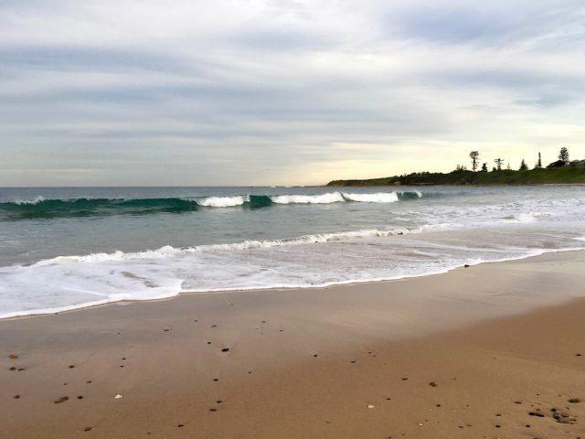 Dog-friendly McCauleys Beach near Sydney