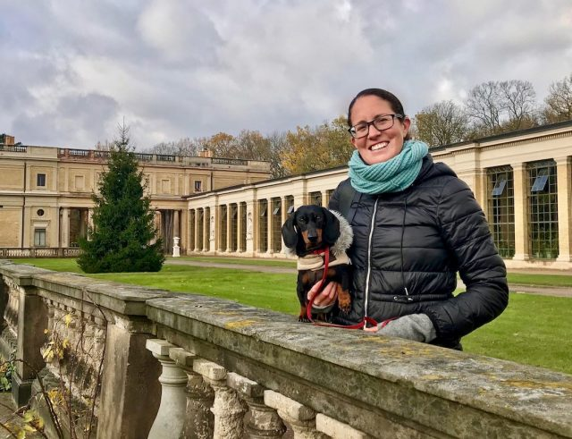 Travel with dog to Europe