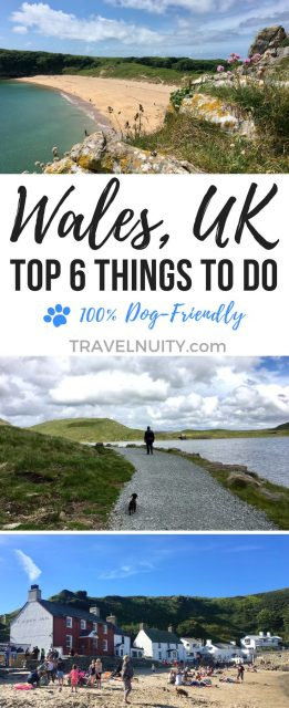 Dog-friendly things to do in Wales United Kingdom