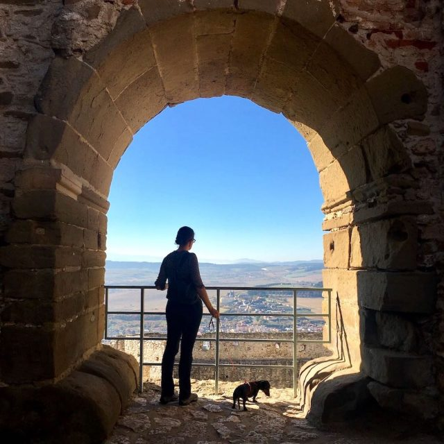 Dog-friendly sightseeing in Slovakia: Spis Castle