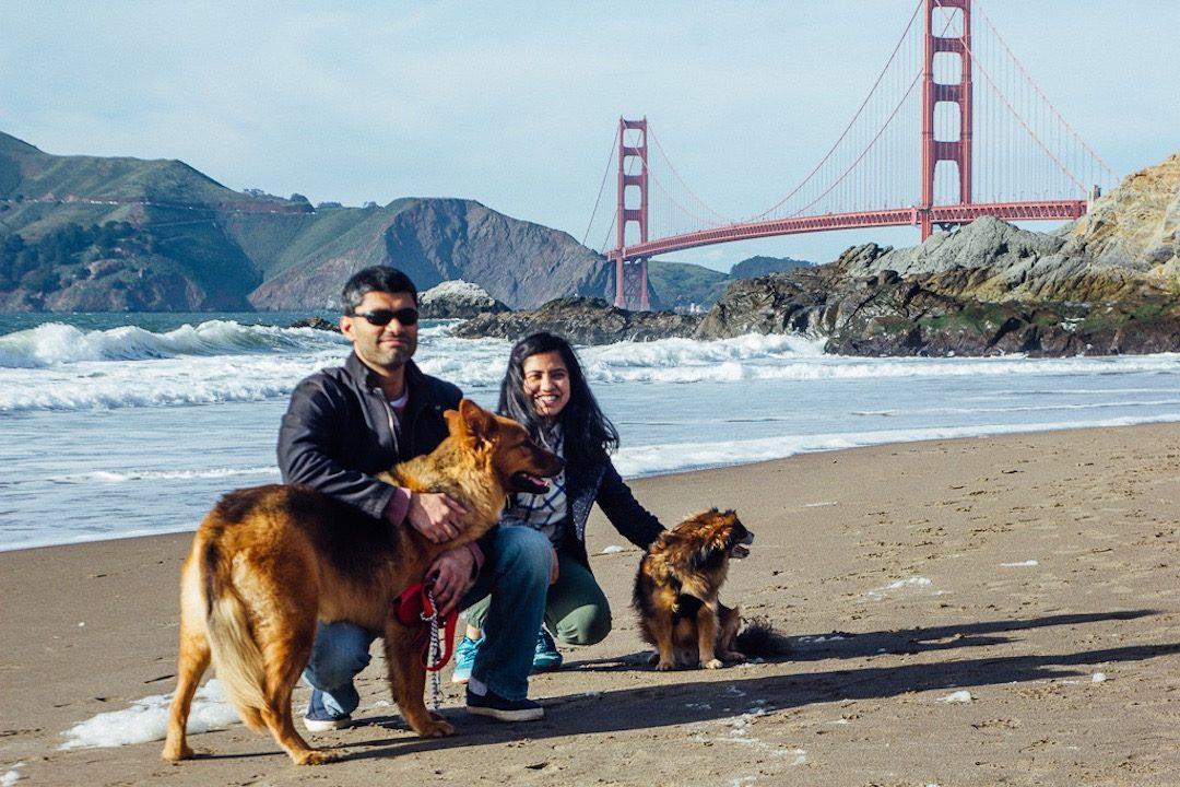 Dog-Friendly San Francisco