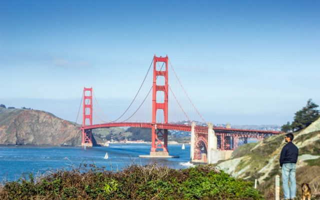 Dog-friendly things to do in San Francisco