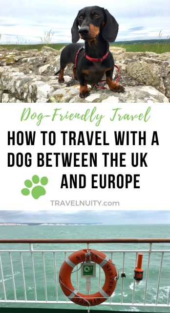 Taking a dog to Europe from UK
