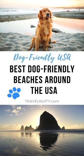 Dog-Friendly Beaches USA