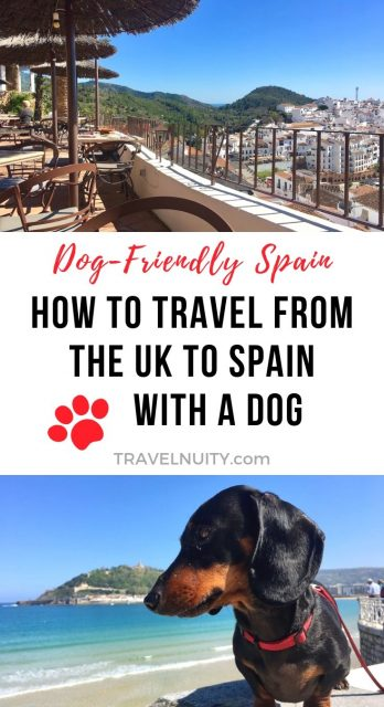 Travelling to Spain with a Dog from the UK pin