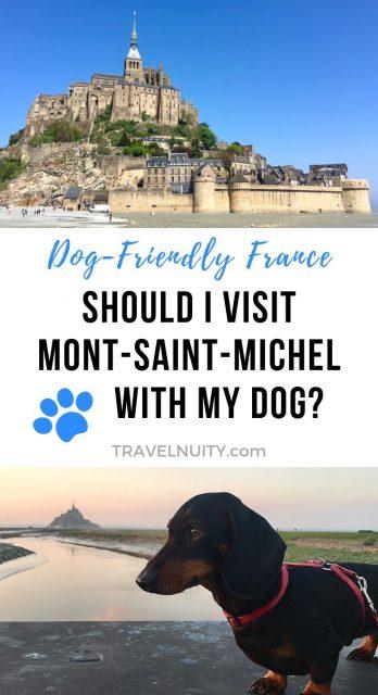 Mont Saint Michel with a dog