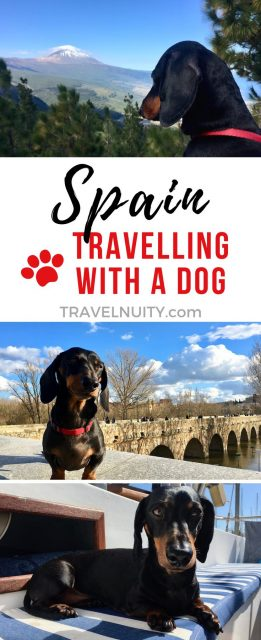 Spain Dog-Friendly Travel