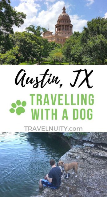 Austin Dog-Friendly Travel pin