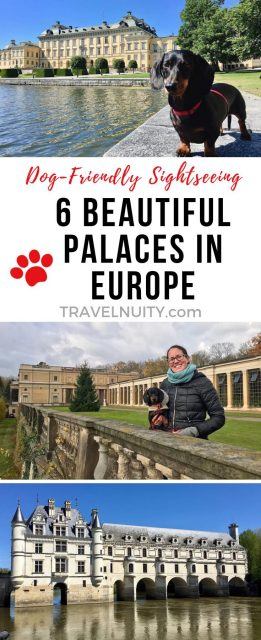 Dog-friendly palaces in Europe