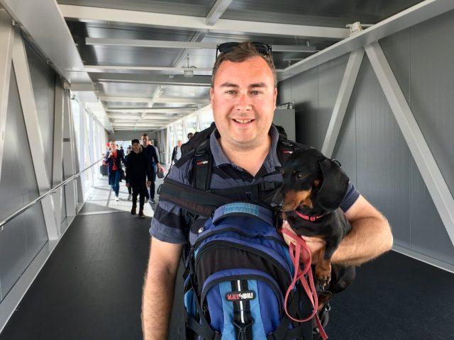dog-friendly cruises