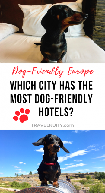 Europe City Most Pet-Friendly Hotels 2