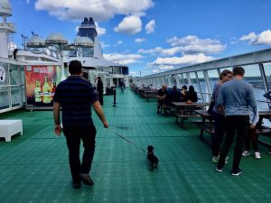 Dog-Friendly Baltic Cruise