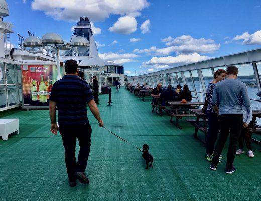 Dog-Friendly Baltic Cruise