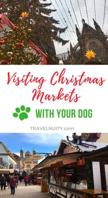 Visiting Christmas Markets with Your Dog