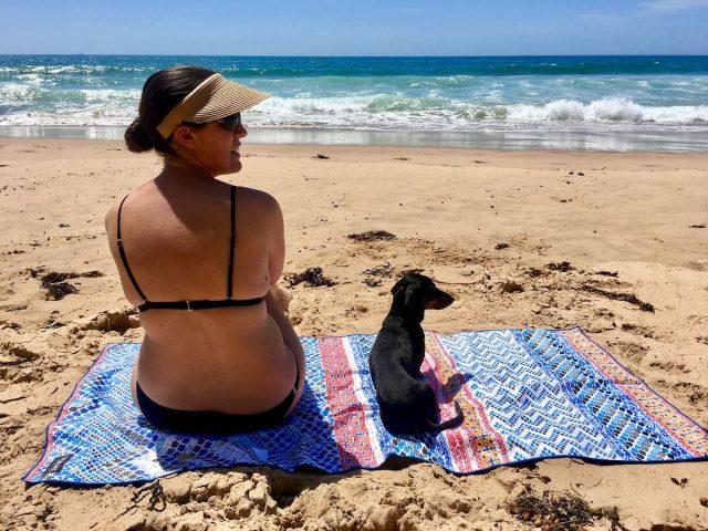 dog quarantine australia