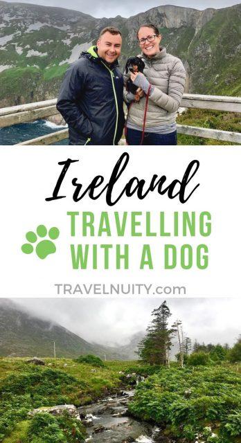 Ireland Dog-Friendly Travel
