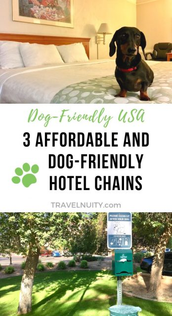 Hotel chains that allow dogs in the USA