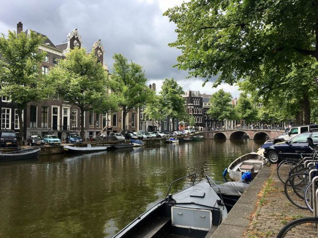 Visit Amsterdam with a dog