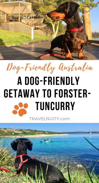 Dog-friendly Forster Tuncurry getaway
