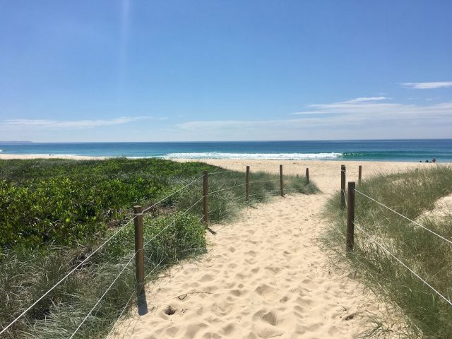 Dog-friendly beaches Forster