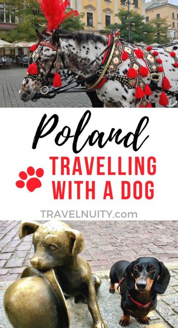 Poland Travelling with a Dog