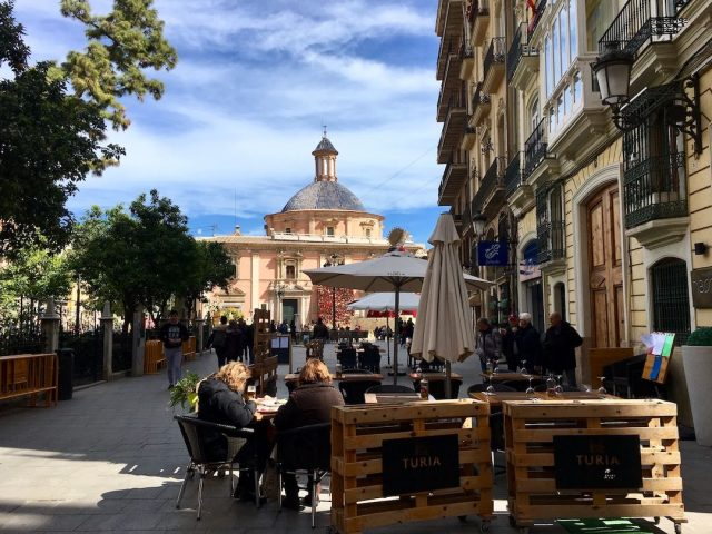Pet-Friendly Hotels in Valencia