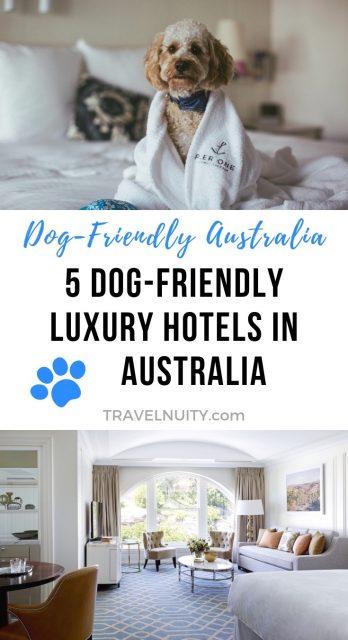Dog-friendly luxury hotels in Australia