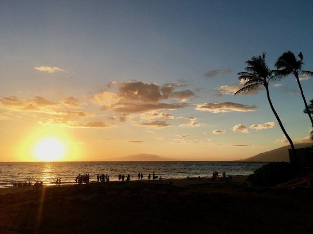 Moving pets to Hawaii