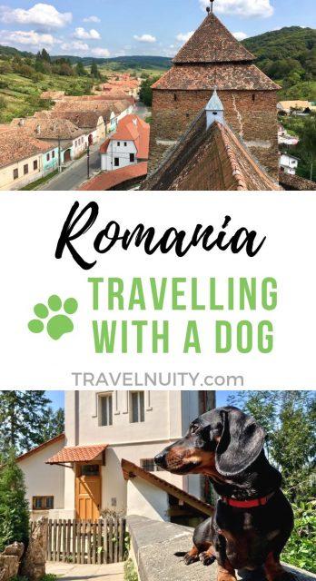 Romania Dog-Friendly Travel