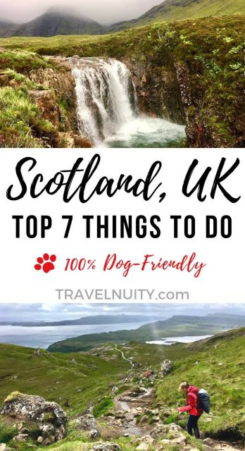 Dog-friendly things to do in Scotland