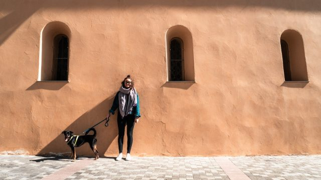 Flying with a dog from Thailand to France