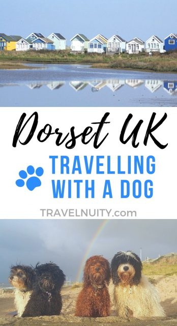 Visit Dorset with a dog