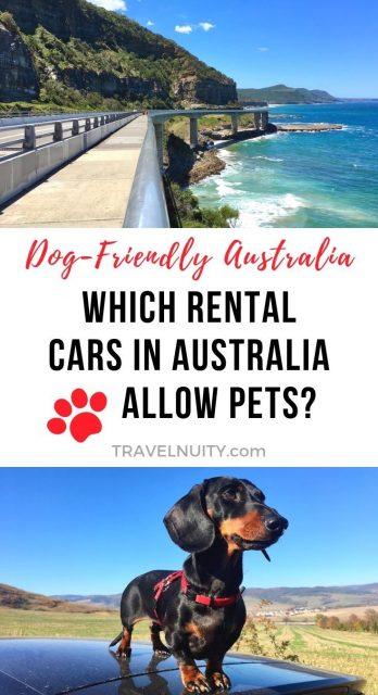 Pet-friendly rental cars Australia pin